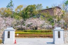 関西大学 千里山キャンパス