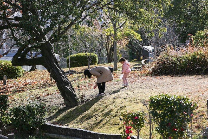子どもとの散策にも楽しい庭園エリア