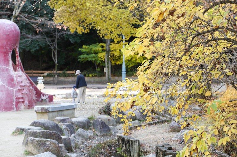 秋は紅葉が美しい園内