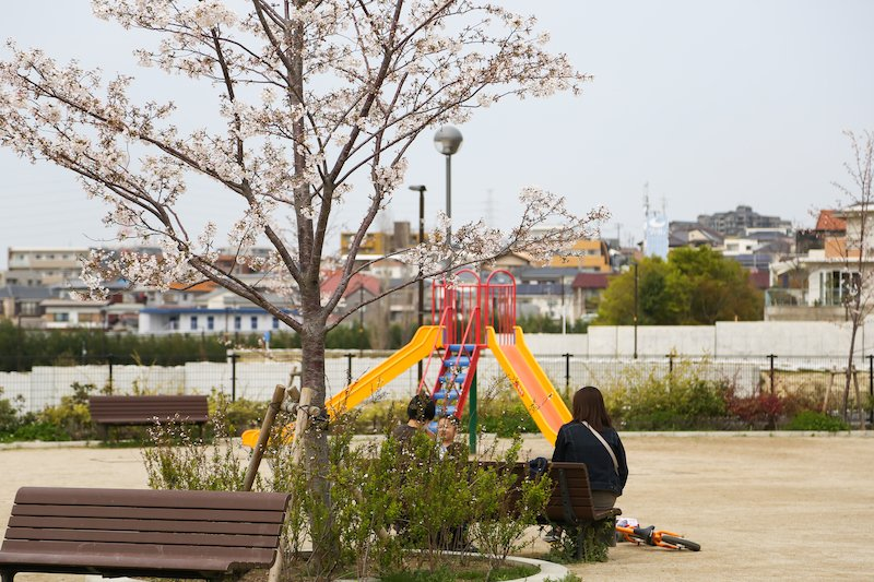 「円山中央公園」